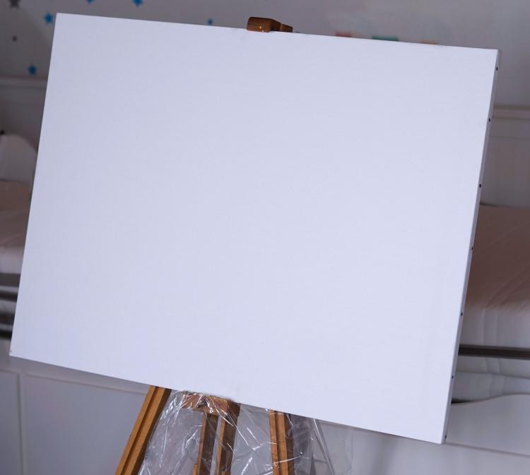 A plain canvas